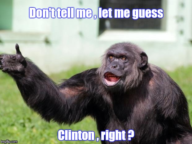 Gorilla your dreams | Don't tell me , let me guess Clinton , right ? | image tagged in gorilla your dreams | made w/ Imgflip meme maker