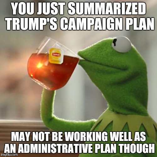But Thats None Of My Business Meme | YOU JUST SUMMARIZED TRUMP'S CAMPAIGN PLAN MAY NOT BE WORKING WELL AS AN ADMINISTRATIVE PLAN THOUGH | image tagged in memes,but thats none of my business,kermit the frog | made w/ Imgflip meme maker
