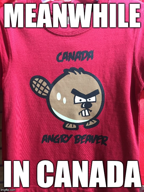 Niagara Falls Table Rock souvenir shop | MEANWHILE IN CANADA | image tagged in memes,canada | made w/ Imgflip meme maker
