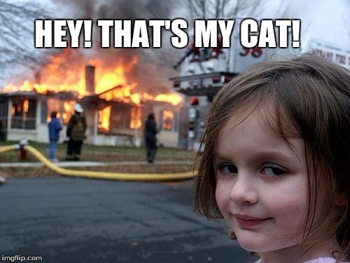 Disaster Girl Meme | HEY! THAT'S MY CAT! | image tagged in memes,disaster girl | made w/ Imgflip meme maker