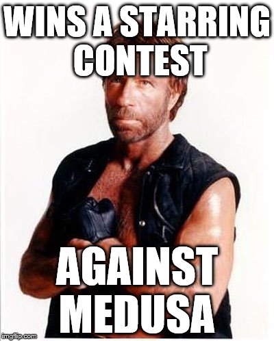 ARD Chuck Norris | WINS A STARRING CONTEST AGAINST MEDUSA | image tagged in ard chuck norris | made w/ Imgflip meme maker