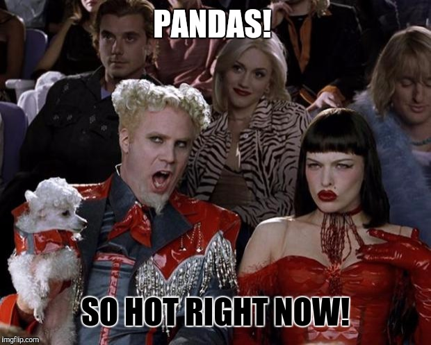 Mugatu So Hot Right Now Meme | PANDAS! SO HOT RIGHT NOW! | image tagged in memes,mugatu so hot right now | made w/ Imgflip meme maker