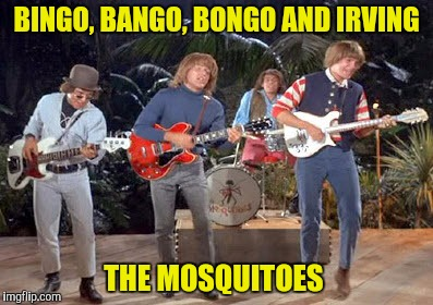 BINGO, BANGO, BONGO AND IRVING THE MOSQUITOES | made w/ Imgflip meme maker