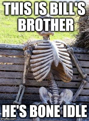 Waiting Skeleton Meme | THIS IS BILL'S BROTHER HE'S BONE IDLE | image tagged in memes,waiting skeleton | made w/ Imgflip meme maker