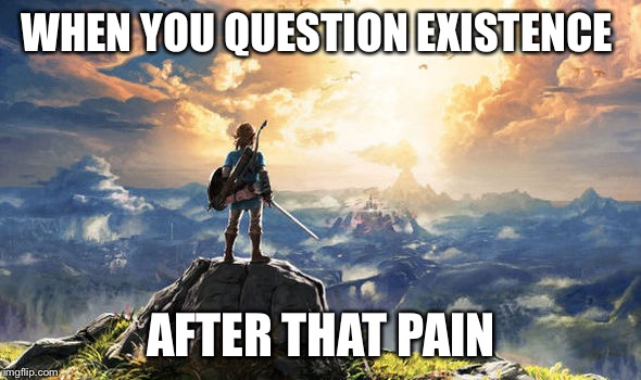 Zelda | WHEN YOU QUESTION EXISTENCE AFTER THAT PAIN | image tagged in zelda | made w/ Imgflip meme maker