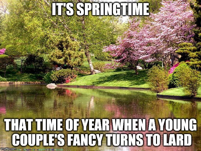 IT'S SPRINGTIME THAT TIME OF YEAR WHEN A YOUNG COUPLE'S FANCY TURNS TO LARD | made w/ Imgflip meme maker