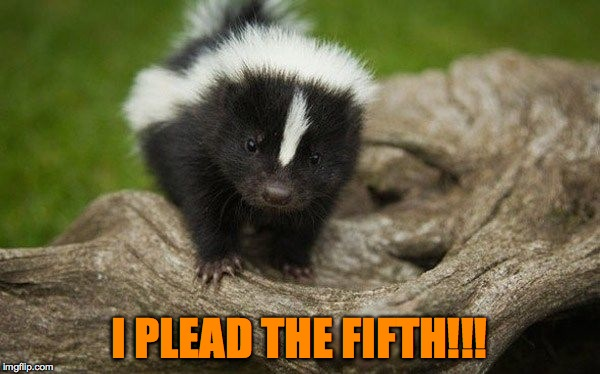 I PLEAD THE FIFTH!!! | made w/ Imgflip meme maker