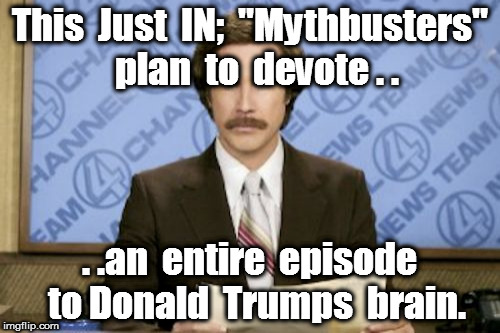 "Ron Burgundy Meme | This  Just  IN;  ""Mythbusters""  plan  to  devote . . . .an  entire  episode  to Donald  Trumps  brain. 