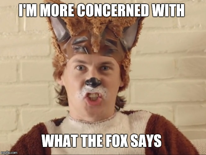 I'M MORE CONCERNED WITH WHAT THE FOX SAYS | made w/ Imgflip meme maker