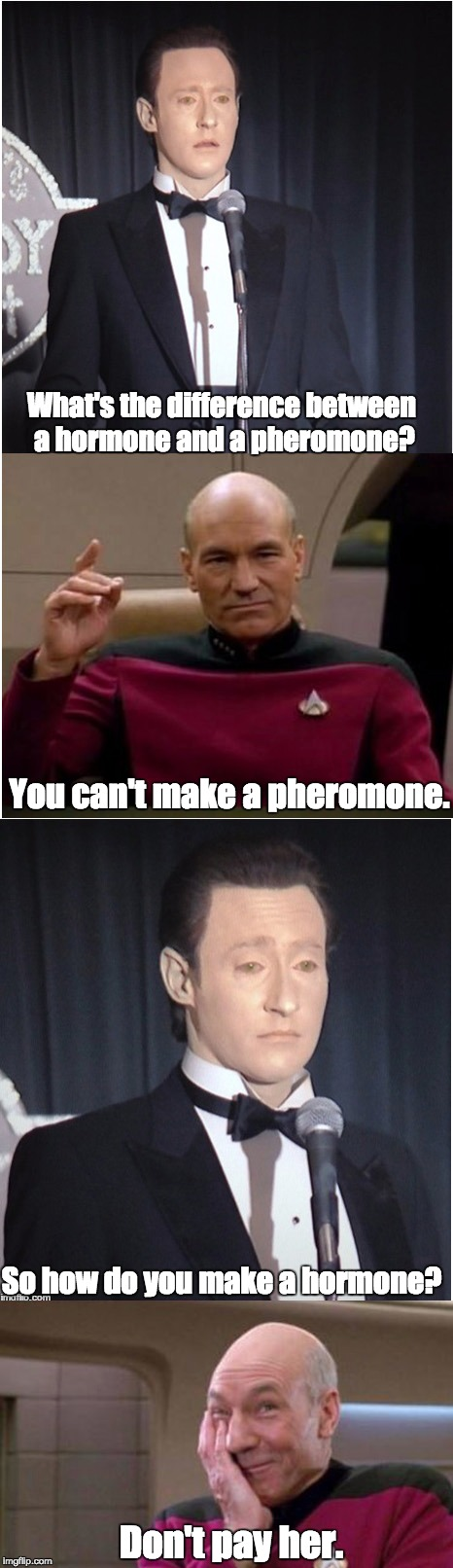 Difference between hormone and pheromone. | What's the difference between a hormone and a pheromone? So how do you make a hormone? You can't make a pheromone. Don't pay her. | image tagged in picard,data | made w/ Imgflip meme maker