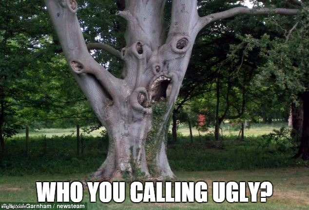WHO YOU CALLING UGLY? | made w/ Imgflip meme maker