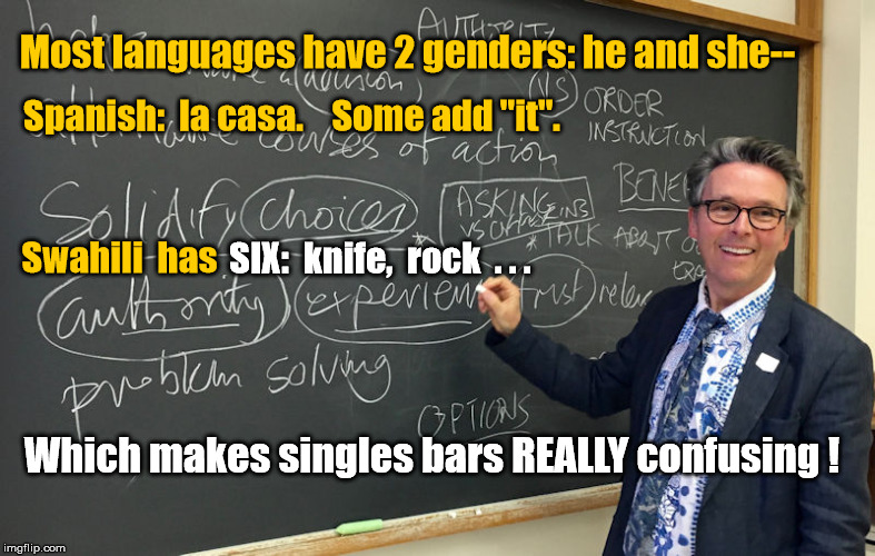 "Swahili language has 6 genders | Most languages have 2 genders: he and she-- Which makes singles bars REALLY confusing ! Spanish:  la casa.    Some add ""it"". Swahili  has SI 
