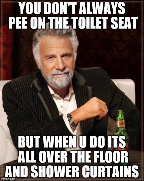 The Most Interesting Man In The World Meme | YOU DON'T ALWAYS PEE ON THE TOILET SEAT BUT WHEN U DO ITS ALL OVER THE FLOOR AND SHOWER CURTAINS | image tagged in memes,the most interesting man in the world | made w/ Imgflip meme maker