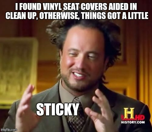 Ancient Aliens Meme | I FOUND VINYL SEAT COVERS AIDED IN CLEAN UP, OTHERWISE, THINGS GOT A LITTLE STICKY | image tagged in memes,ancient aliens | made w/ Imgflip meme maker
