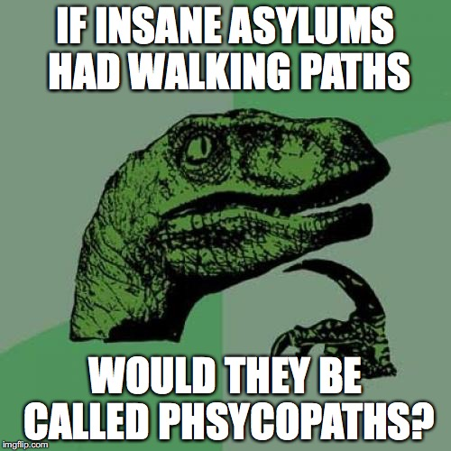 Philosoraptor Meme | IF INSANE ASYLUMS HAD WALKING PATHS WOULD THEY BE CALLED PHSYCOPATHS? | image tagged in memes,philosoraptor | made w/ Imgflip meme maker