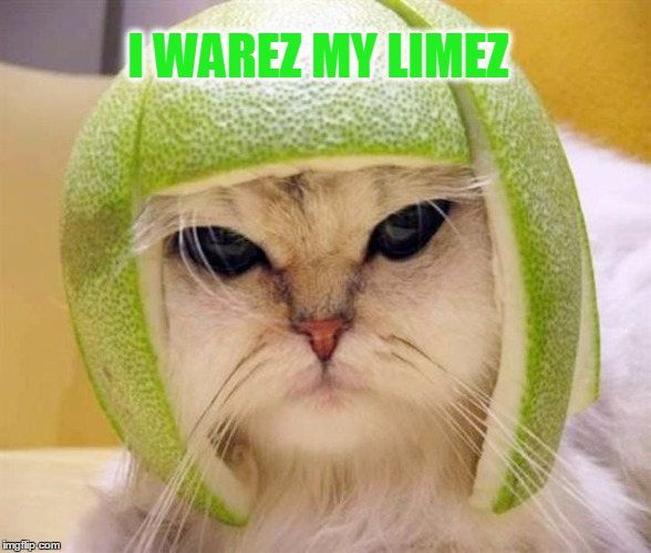 I WAREZ MY LIMEZ | made w/ Imgflip meme maker