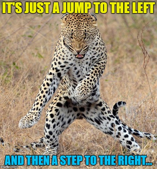 I've got the moves like a jaguar... |  IT'S JUST A JUMP TO THE LEFT; AND THEN A STEP TO THE RIGHT... | image tagged in leopard dancing,memes,rocky horror picture show,music,films,animals | made w/ Imgflip meme maker