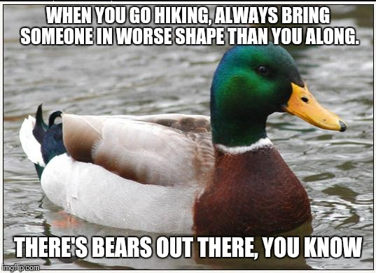 Actual Advice Mallard Meme | WHEN YOU GO HIKING, ALWAYS BRING SOMEONE IN WORSE SHAPE THAN YOU ALONG. THERE'S BEARS OUT THERE, YOU KNOW | image tagged in memes,actual advice mallard | made w/ Imgflip meme maker