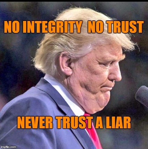 trump | NO INTEGRITY  NO TRUST NEVER TRUST A LIAR | image tagged in liar | made w/ Imgflip meme maker