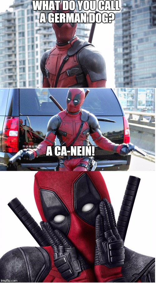 I just really, really wanted to use this template. |  WHAT DO YOU CALL A GERMAN DOG? A CA-NEIN! | image tagged in bad pun deadpool,bad pun | made w/ Imgflip meme maker