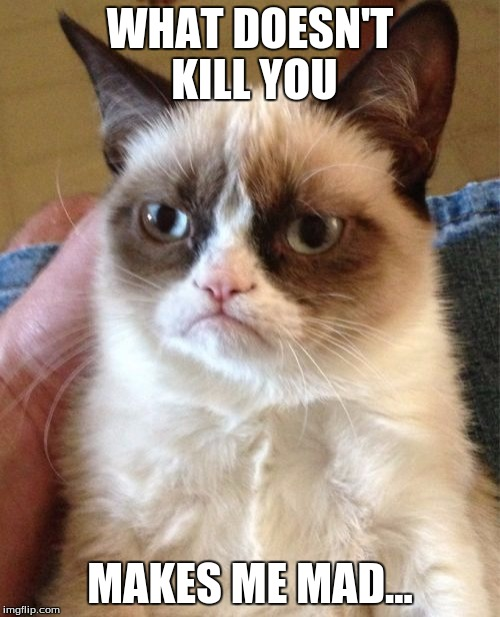 He's at his best times... | WHAT DOESN'T KILL YOU MAKES ME MAD... | image tagged in memes,funny,grumpy cat,meme,dank,dank memes | made w/ Imgflip meme maker