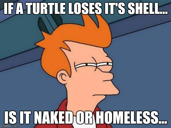 Futurama Fry | IF A TURTLE LOSES IT'S SHELL... IS IT NAKED OR HOMELESS... | image tagged in memes,futurama fry | made w/ Imgflip meme maker