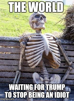 Waiting Skeleton Meme | THE WORLD WAITING FOR TRUMP TO STOP BEING AN IDIOT | image tagged in memes,waiting skeleton | made w/ Imgflip meme maker