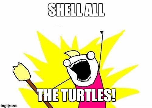 X All The Y Meme | SHELL ALL THE TURTLES! | image tagged in memes,x all the y | made w/ Imgflip meme maker