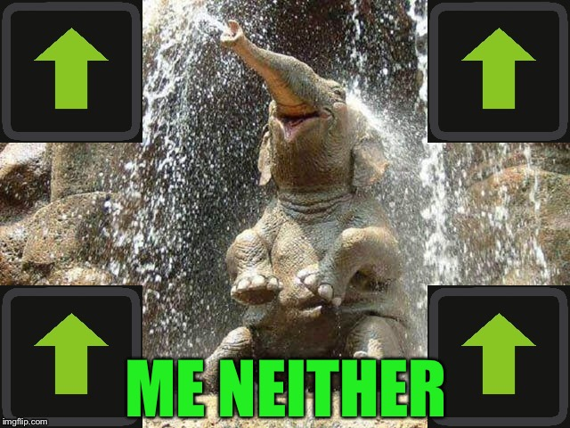 Upvote Elephant | ME NEITHER | image tagged in upvote elephant | made w/ Imgflip meme maker