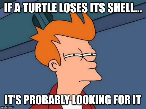 Futurama Fry Meme | IF A TURTLE LOSES ITS SHELL... IT'S PROBABLY LOOKING FOR IT | image tagged in memes,futurama fry | made w/ Imgflip meme maker