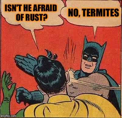 Batman Slapping Robin Meme | ISN'T HE AFRAID OF RUST? NO, TERMITES | image tagged in memes,batman slapping robin | made w/ Imgflip meme maker