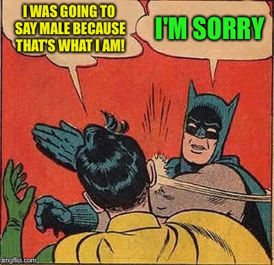 Batman Slapping Robin Meme | I WAS GOING TO SAY MALE BECAUSE THAT'S WHAT I AM! I'M SORRY | image tagged in memes,batman slapping robin | made w/ Imgflip meme maker