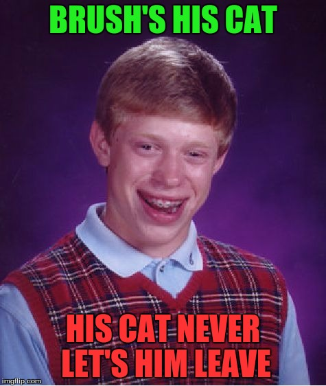 Bad Luck Brian Meme | BRUSH'S HIS CAT HIS CAT NEVER LET'S HIM LEAVE | image tagged in memes,bad luck brian | made w/ Imgflip meme maker