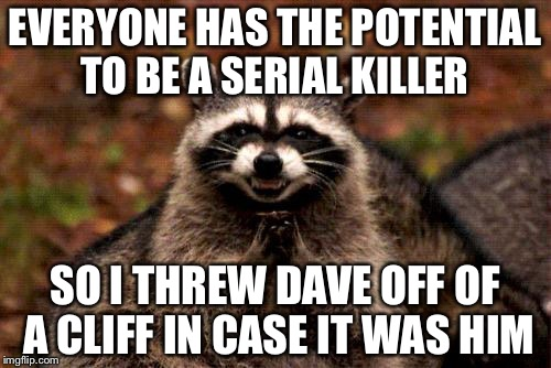 Take that Dave! | EVERYONE HAS THE POTENTIAL TO BE A SERIAL KILLER SO I THREW DAVE OFF OF A CLIFF IN CASE IT WAS HIM | image tagged in memes,evil plotting raccoon | made w/ Imgflip meme maker