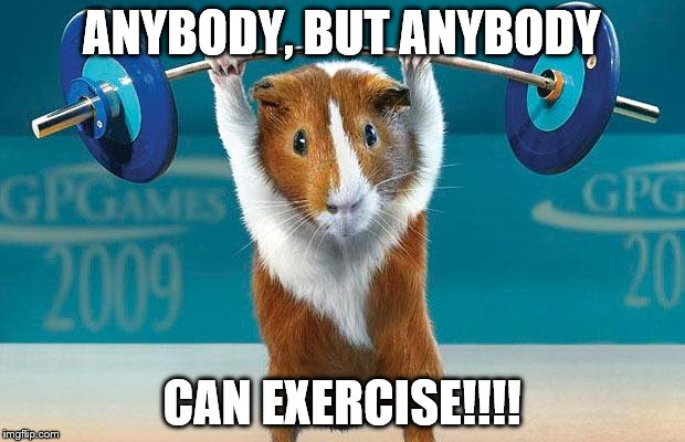 Anybody But Anybody Can Exercise Image Tagged In Funny Exercise
