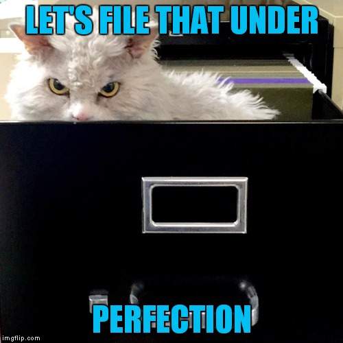 LET'S FILE THAT UNDER PERFECTION | image tagged in pompous lets file that under | made w/ Imgflip meme maker