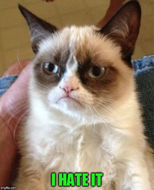 Grumpy Cat Meme | I HATE IT | image tagged in memes,grumpy cat | made w/ Imgflip meme maker