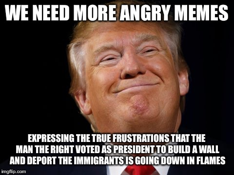 Fluff vs substance  | WE NEED MORE ANGRY MEMES EXPRESSING THE TRUE FRUSTRATIONS THAT THE MAN THE RIGHT VOTED AS PRESIDENT TO BUILD A WALL AND DEPORT THE IMMIGRANT | image tagged in memes,donald trump,political meme | made w/ Imgflip meme maker
