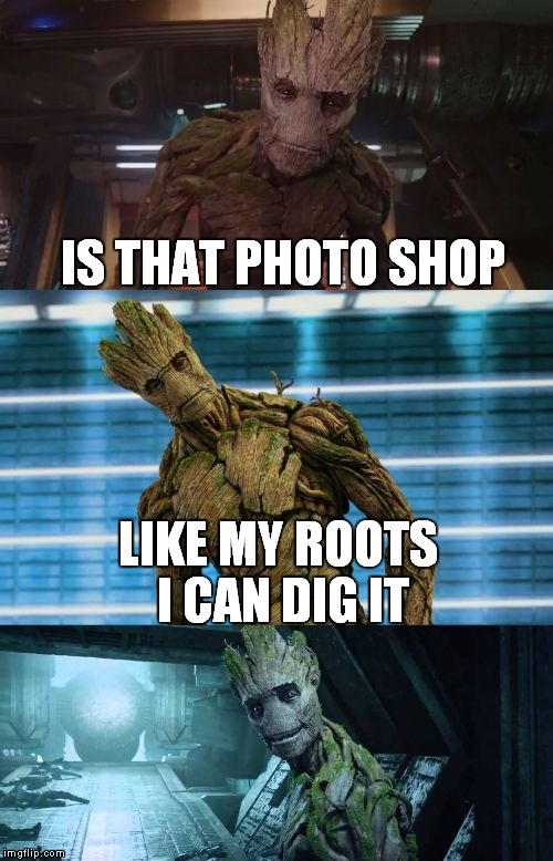 bad pun groot | IS THAT PHOTO SHOP LIKE MY ROOTS I CAN DIG IT | image tagged in bad pun groot | made w/ Imgflip meme maker