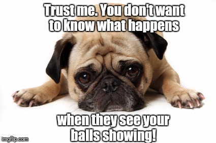 Trust me. You don't want to know what happens when they see your balls showing! | image tagged in sad dog | made w/ Imgflip meme maker