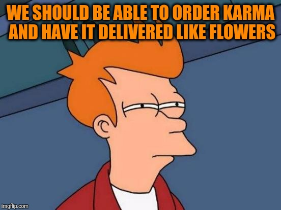Futurama Fry Meme | WE SHOULD BE ABLE TO ORDER KARMA AND HAVE IT DELIVERED LIKE FLOWERS | image tagged in memes,futurama fry | made w/ Imgflip meme maker