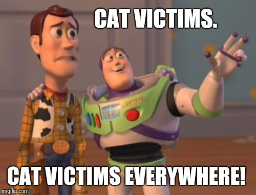 X, X Everywhere Meme | CAT VICTIMS. CAT VICTIMS EVERYWHERE! | image tagged in memes,x x everywhere | made w/ Imgflip meme maker