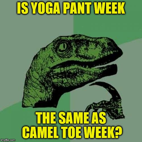 Philosoraptor Meme | IS YOGA PANT WEEK THE SAME AS CAMEL TOE WEEK? | image tagged in memes,philosoraptor | made w/ Imgflip meme maker