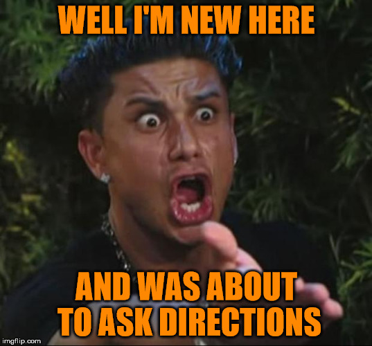 Pauly | WELL I'M NEW HERE AND WAS ABOUT TO ASK DIRECTIONS | image tagged in pauly | made w/ Imgflip meme maker