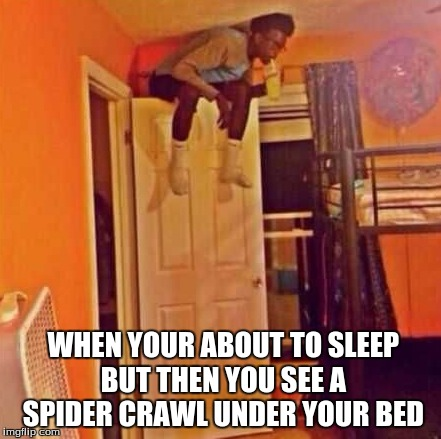 WHEN YOUR ABOUT TO SLEEP BUT THEN YOU SEE A SPIDER CRAWL UNDER YOUR BED | image tagged in scared black guy | made w/ Imgflip meme maker