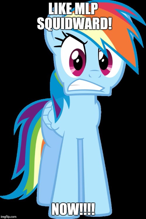 mad Rainbow Dash | LIKE MLP SQUIDWARD! NOW!!!! | image tagged in mad rainbow dash | made w/ Imgflip meme maker