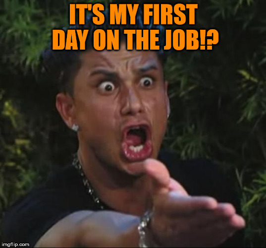 Pauly | IT'S MY FIRST DAY ON THE JOB!? | image tagged in pauly | made w/ Imgflip meme maker