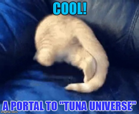 "COOL! A PORTAL TO ""TUNA UNIVERSE"" 