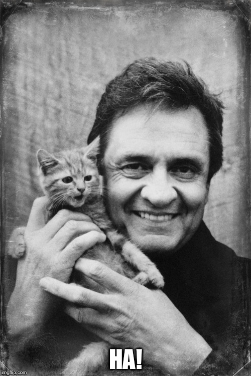 Johnny Cash Cat | HA! | image tagged in johnny cash cat | made w/ Imgflip meme maker