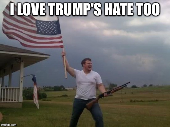 I LOVE TRUMP'S HATE TOO | made w/ Imgflip meme maker